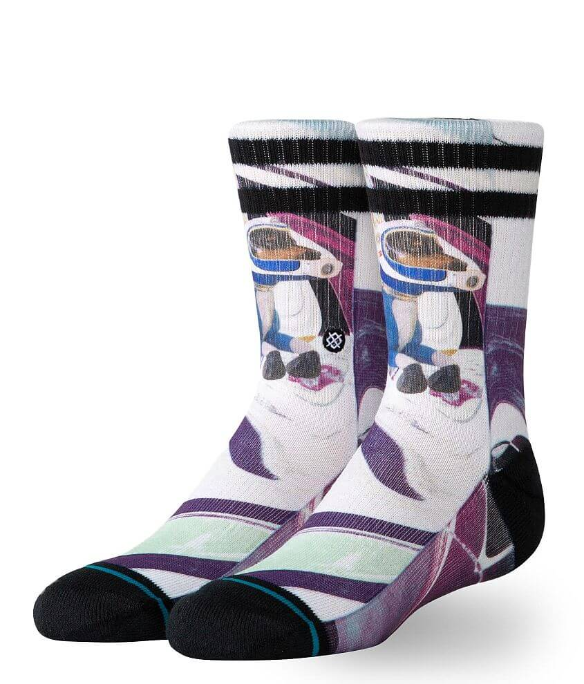 Boys - Stance Astrodog Socks front view